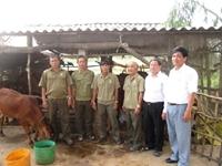 Cựu chiến binh tỉnh Bến Tre noi gương Bác đoàn kết, giúp nhau vượt khó vươn lên