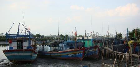 Giá trị khai thác thủy sản của Bà Rịa - Vũng Tàu giai đoạn 2011- 2015 tăng 5,7 năm
