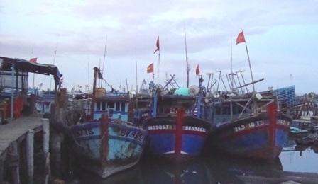Bà Rịa – Vũng Tàu thành lập gần 300 tổ ngư dân đoàn kết khai thác hải sản