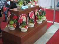 Giới thiệu nhiều đặc sản vùng miền tại Hội chợ Xuân 2017