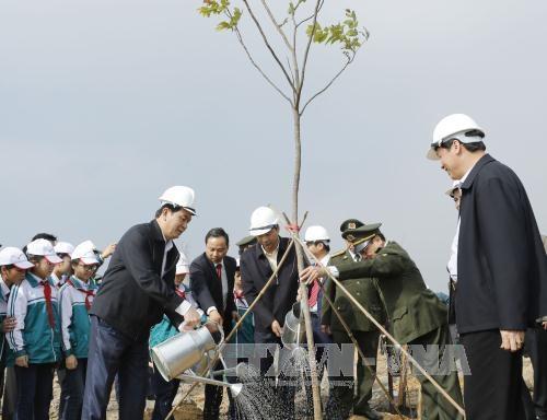 Chủ tịch nước Trần Đại Quang Nâng cao ý thức, trách nhiệm bảo vệ rừng