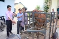 Phú Yên Gắn học tập tấm gương đạo đức, phong cách Hồ Chí Minh với xây dựng, chỉnh đốn Đảng
