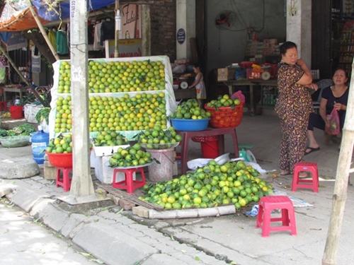 Lần đầu tiên tổ chức Lễ hội cam Hưng Yên