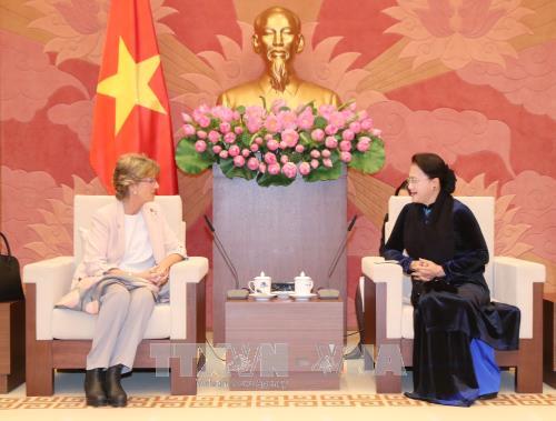 Chủ tịch Quốc hội Nguyễn Thị Kim Ngân tiếp Đại sứ Tây Ban Nha đến chào xã giao
