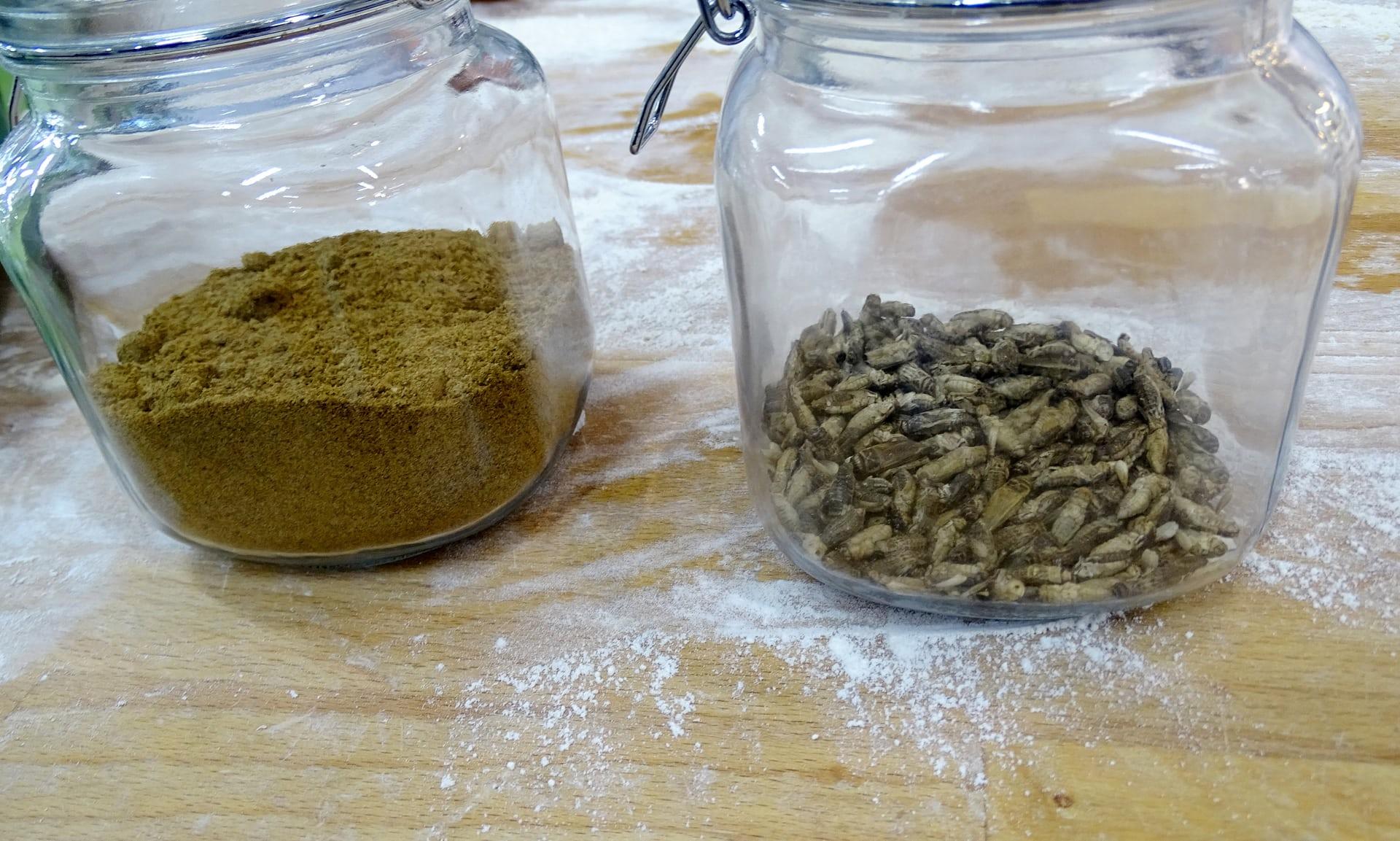 Phần Lan Những chiếc bánh mì làm từ côn trùng đầu tiên trên thế giới