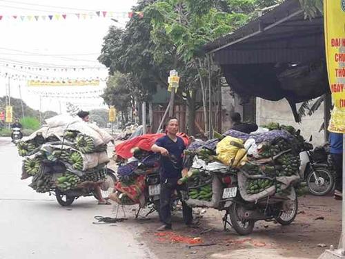 Khoái Châu Hưng Yên  Đẩy mạnh sản xuất nông nghiệp theo hướng hàng hóa