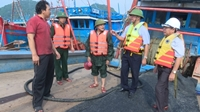 Huyện Cát Hải Hải Phòng chủ động phòng chống bão số 4