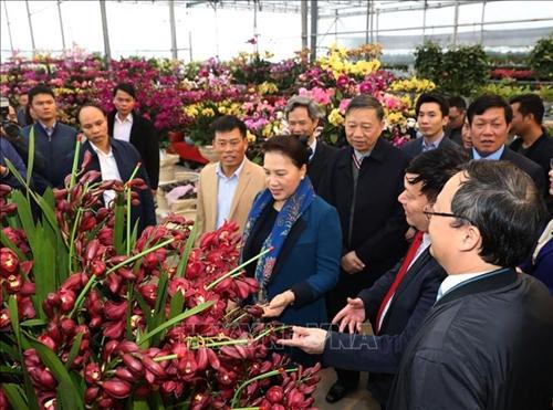 Chủ tịch Quốc hội Nguyễn Thị Kim Ngân thăm xã nông thôn mới tại tỉnh Hưng Yên