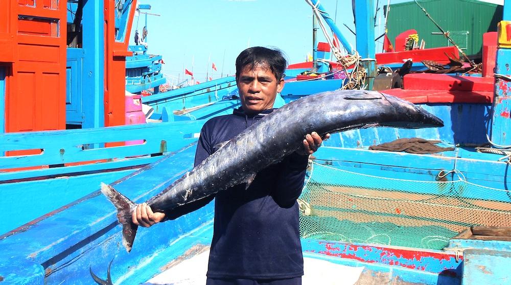 Ngư dân Quảng Ngãi bước vào vụ đánh bắt mới