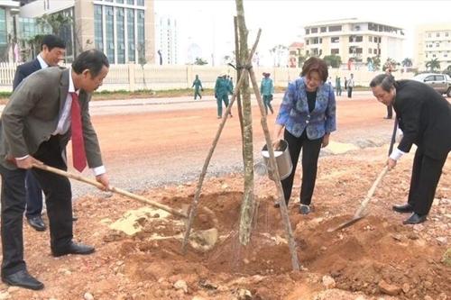 Quảng Bình phát động Tết trồng cây năm 2019