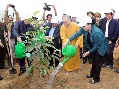 Đẩy mạnh tuyên truyền lợi ích, giá trị nhân văn việc trồng cây, trồng rừng