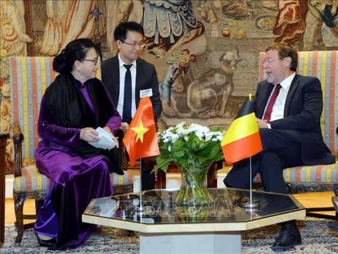 Việt Nam và Bỉ xem xét để có thỏa thuận hợp tác mới