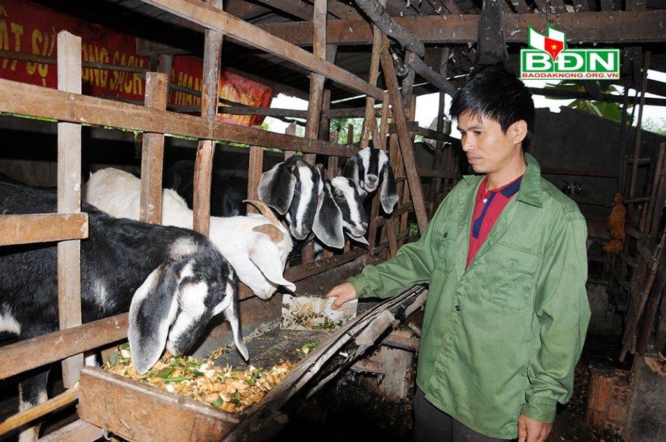 Đắk Nông gắn xây dựng nông thôn mới với giảm nghèo bền vững