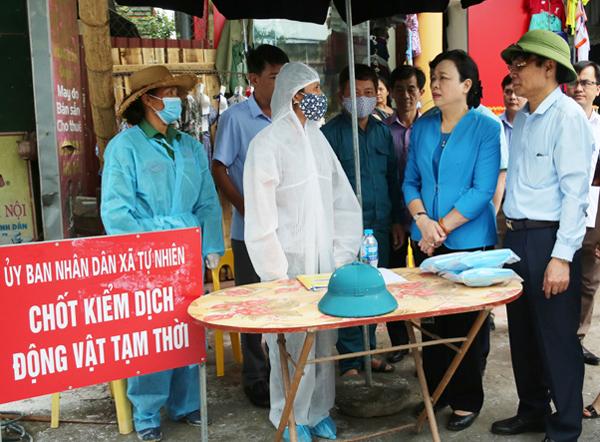 Hà Nội quyết liệt phòng, chống dịch tả lợn châu Phi