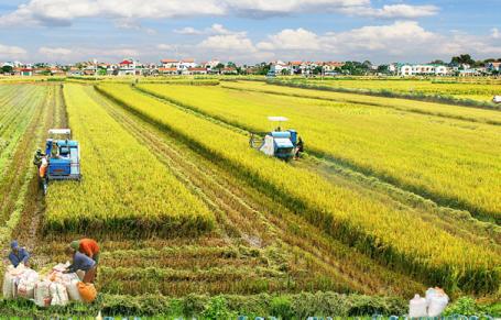 Lộ trình thực hiện các mục tiêu phát triển bền vững đến năm 2030