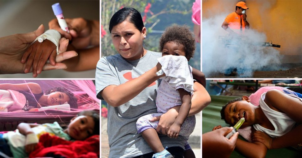 Honduras đối phó đợt bùng phát sốt xuất huyết tồi tệ nhất trong nửa thế kỷ