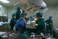 Bệnh viện Chợ Rẫy cấp cứu 916 trường hợp dịp nghỉ lễ 2 9