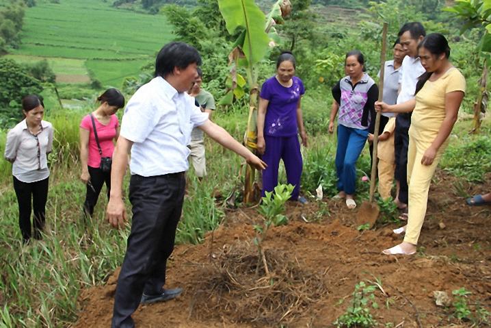 Tổ chức 1 338 buổi tập huấn kỹ thuật cho hội viên nông dân