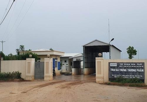 Cuộc sống người dân đảo lộn vì trại chăn nuôi gà của Công ty TNHH MTV Gia cầm Hòa Phát Phú Thọ