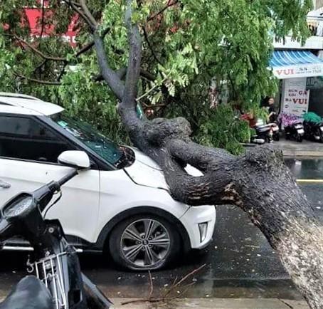 Ứng phó, khắc phục kịp thời hậu quả của mưa lũ