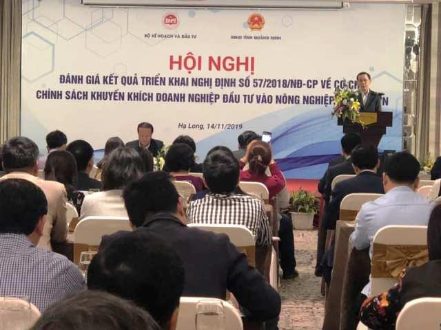 Chính sách khuyến khích doanh nghiệp đầu tư mạnh vào nông nghiệp, nông thôn