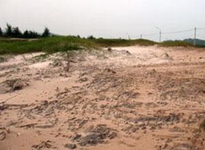 Phát hiện di chỉ khảo cổ trên huyện đảo Cô Tô