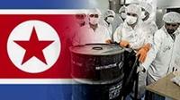 Hàn Quốc CHDCND Triều Tiên đã bắt đầu làm giàu uranium từ giữa những năm 1990