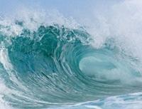 UNEP ghi nhận nỗ lực bảo vệ các đại dương của Indonesia