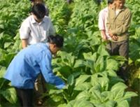 Nhiều cách làm hay về dạy nghề lao động nông thôn