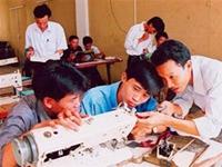 Đào tạo nghề, giải quyết việc làm cho lao động nông thôn