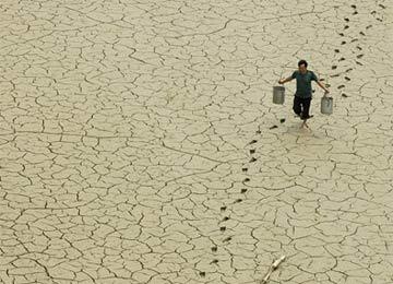 Cả nước đang khát