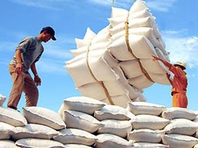Cần có các giải pháp đồng bộ để nâng cao giá trị nông sản