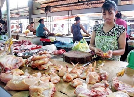 Tìm giải pháp bình ổn giá thịt lợn cuối năm