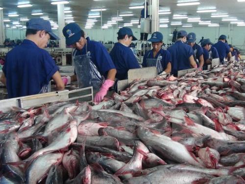 Nâng cao năng lực chế biến cho nông sản Việt Nam