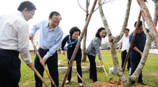 Triển khai chương trình Quỹ 1 triệu cây xanh cho Việt Nam tại Bình Định