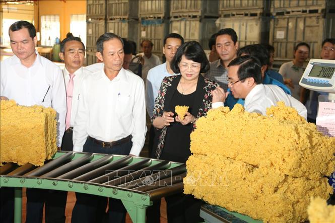 Phó Chủ tịch nước Đặng Thị Ngọc Thịnh Ngành cao su cần nắm bắt tiến bộ Cách mạng công nghiệp lần thứ 4