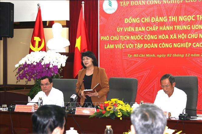 Tập đoàn Công nghiệp Cao su Việt Nam cần phát triển mô hình doanh nghiệp cổ phần