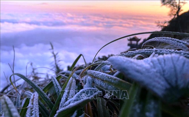 Bắc Bộ ngày nắng, vùng núi cao có băng giá, sương muối