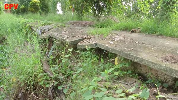 Tình trạng sạt lở bờ sông ở Vĩnh Long ngày càng phức tạp