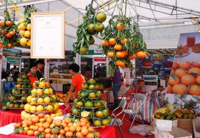 Tuần lễ cam sành, các sản phẩm OCOP và sản phẩm tiêu biểu tỉnh Hà Giang năm 2019