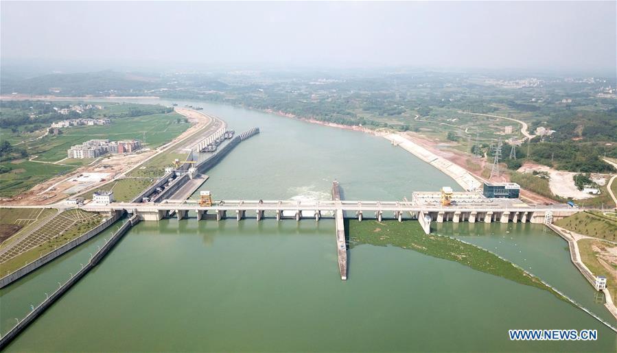 Hơn 3 200 người bơi vượt sông chào đón Năm mới 2020 tại Trung Quốc
