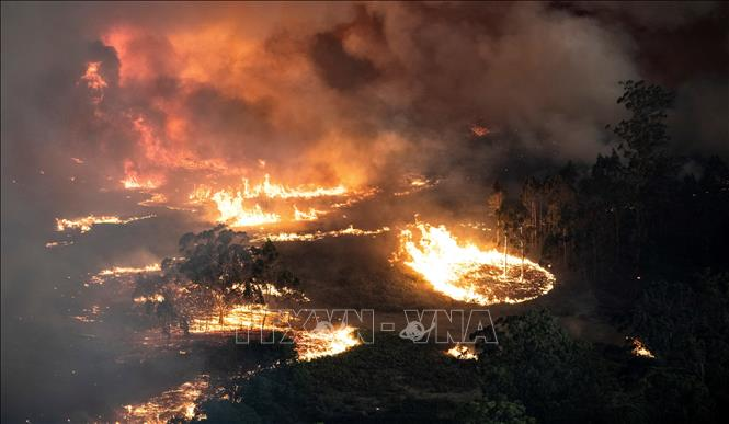 Cháy rừng ở Australia Bang Victoria ban bố tình trạng thảm họa