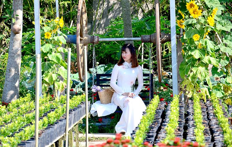 Tham quan làng hoa lớn nhất vùng đồng bằng sông Cửu Long