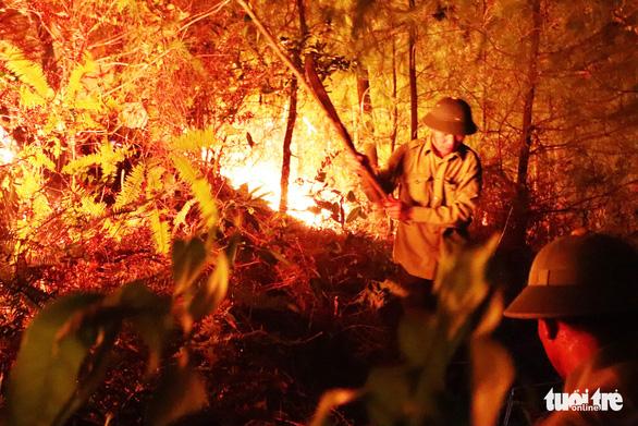 Truy tặng Huân chương Dũng cảm cho người phụ nữ tử vong khi tham gia chữa cháy rừng ở Nghệ An