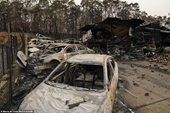 Điện thăm hỏi vụ cháy rừng gây thiệt hại lớn về người, tài sản và môi trường tại Australia