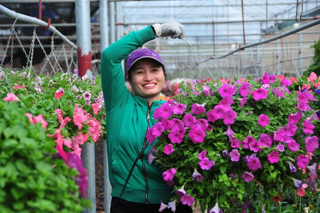 Làng hoa Xuân Quan hối hả đón Tết