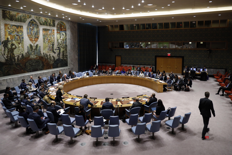 Hội đồng Bảo an LHQ sắp thảo luận về kế hoạch hòa bình Trung Đông của Mỹ