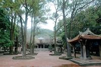 Thăm Côn Sơn - Nhớ Nguyễn Trãi