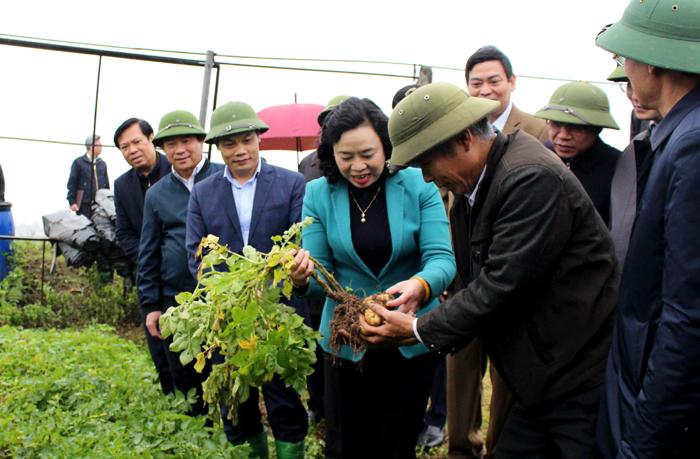 Thạch Thất tập trung để đạt huyện nông thôn mới trong năm 2020