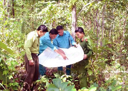 Cà Mau nỗ lực bảo vệ rừng trong mùa khô
